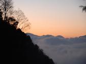 太平山&見晴古道:調整大小DSC_0949.JPG
