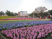 花博--春之花頌:IMG_4771.JPG