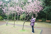 100之櫻花:DSC_0390.JPG