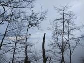 三個媽媽太平山翠峰湖之行:IMG_3036.JPG