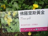 桃源仙谷:IMG_7292_調整大小