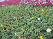 花博--春之花頌:IMG_6798_調整大小.JPG