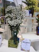 2011台北國際蘭展:IMG_6311_調整大小.JPG