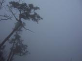 太平山翠峰湖:調整大小101_8752.JPG