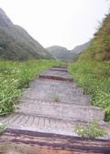 九份-金瓜石-貂山古道:調整大小照片 128.jpg
