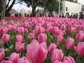 花博--春之花頌:IMG_4829.JPG