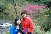 竹子湖:DSC_0076_調整大小_調整大小.JPG