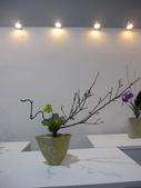 2011台北國際蘭展:IMG_6172_調整大小.JPG