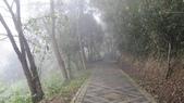 雪見森林遊憩區:IMG_9018.JPG