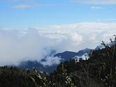 三個媽媽太平山翠峰湖之行:IMG_3067.JPG