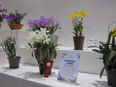 2011台北國際蘭展:IMG_6267_調整大小.JPG