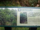 太平山翠峰湖山毛櫸步道:調整大小100_0729.JPG
