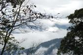 雪見森林遊憩區:DSC_0295.JPG