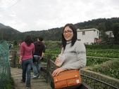 竹子湖:IMG_6441_調整大小_調整大小.JPG