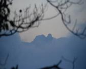太平山&見晴古道:調整大小DSC_0924.JPG
