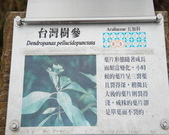 太平山翠峰湖:調整大小DSC_0468.JPG