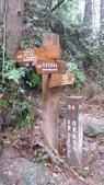 雪見森林遊憩區:IMG_8969.JPG