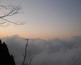太平山&見晴古道:調整大小DSC_0932.JPG