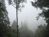 太平山翠峰湖:調整大小DSC_0463.JPG