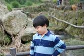 竹子湖:DSC_0146_調整大小_調整大小.JPG