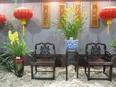 2011台北國際蘭展:IMG_6078_調整大小.JPG