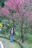 竹子湖:DSC_0071_調整大小_調整大小.JPG