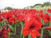 花博--春之花頌:IMG_5812.JPG