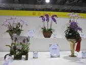 2011台北國際蘭展:IMG_6364_調整大小.JPG