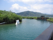 日月潭山水:IMG_1901.JPG