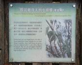 太平山翠峰湖:調整大小DSC_0436.JPG