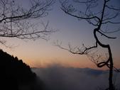 太平山&見晴古道:調整大小DSC_0942.JPG
