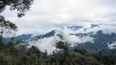 雪見森林遊憩區:IMG_8932.JPG