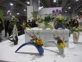 2011台北國際蘭展:IMG_6149_調整大小.JPG