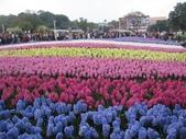 花博--春之花頌:IMG_4760.JPG