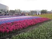 花博--春之花頌:IMG_4746.JPG
