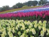 花博--春之花頌:IMG_4740.JPG