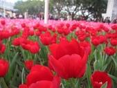 花博--春之花頌:IMG_4819.JPG