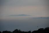 竹子湖:DSC_0179_調整大小_調整大小.JPG