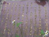 九份-金瓜石-貂山古道:調整大小照片 117.jpg