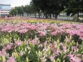 花博--春之花頌:IMG_5850.JPG