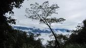 雪見森林遊憩區:IMG_8990.JPG