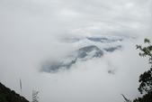 雪見森林遊憩區:DSC_0305.JPG
