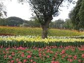 花博--春之花頌:IMG_4710.JPG