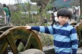 竹子湖:DSC_0137_調整大小_調整大小.JPG