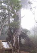 太平山翠峰湖:調整大小101_8726.JPG
