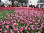 花博--春之花頌:IMG_4828.JPG