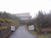 太平山翠峰湖山毛櫸步道:調整大小100_0692.JPG