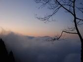 太平山&見晴古道:調整大小DSC_0941.JPG
