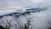 雪見森林遊憩區:IMG_9002.JPG