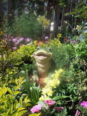 菜花園:調整大小103_1595.JPG
